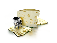 queso y vaca